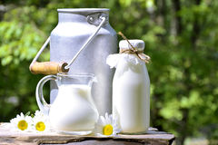 Milk. Milk in different container on the natural background Royalty Free Stock Image