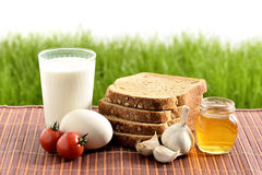 Milk, egg, bread, tomatoes, garlic and honey. Still life with dairy products, milk, egg, bread, tomatoes, garlic and honey on a vintage grass background Stock Photography