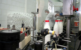 Milk factory Stock Images