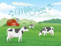 Milk farm field. Dairy farms landscape, cow on ranch fields and country farming cows vector illustration. Milk farm field. Dairy farms landscape, cow on ranch stock illustration