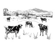 Milk farm VECTOR sketch, outline, rural landscape drawing. Milk farm VECTOR sketch, black and white colors, rural landscape drawing Royalty Free Stock Image