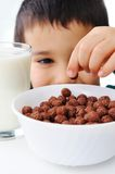 Milk, flakes, childhood Royalty Free Stock Photo