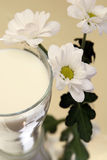 Milk with flowers Stock Photos