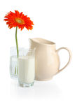 Milk and flowers Stock Image