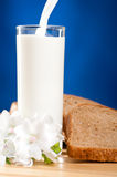 Milk is flowing Royalty Free Stock Photos
