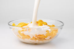 Milk flowing to the bowl with corn flakes Royalty Free Stock Images