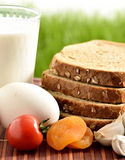 Milk, garlic, honey and egg with bread. Milk, tomatoes, honey, garlic and egg with bread against green grass royalty free stock image