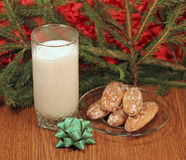 Milk and gingerbread for Santa Royalty Free Stock Photography