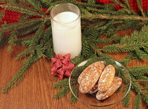 Milk and gingerbread for Santa Stock Photography
