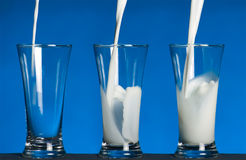 Milk in glass royalty free stock photo