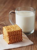 Milk. A glass of milk with cookies Royalty Free Stock Photos
