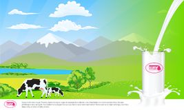 Milk glass on milk splash. Beautiful nature landscape mountain and meadow fields with cows. Illustrated vector Royalty Free Stock Photography