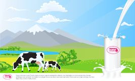 Milk glass on milk splash. Beautiful nature landscape mountain and meadow fields with cows. Illustrated vector Stock Photo