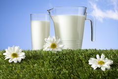 Milk on grass field Stock Images