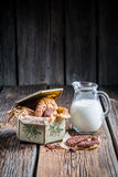 Milk and hazelnut cookies for breakfast Royalty Free Stock Photos