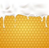 Milk and honey. Dripping  milk with  Honeycombs. Vector illustration Royalty Free Stock Photography
