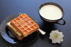 Milk, honey, waffles for breakfast Royalty Free Stock Photos