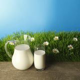 Milk in jar and glass on flower meadow Stock Photo