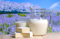 Milk jug. With goat cheese in a mountains in background Stock Photos