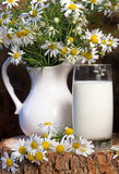 Milk jug and glass cheese in a glass dish Stock Photo