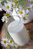 Milk jug and glass cheese in a glass dish Royalty Free Stock Images
