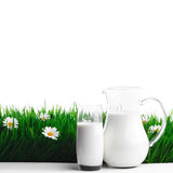 Milk jug and glass on flower field Royalty Free Stock Photo