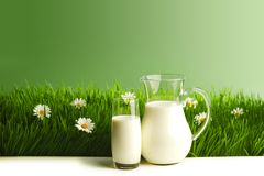 Milk jug and glass on grass Stock Photography