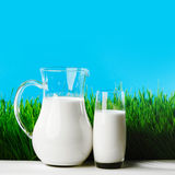 Milk jug and glass on grass field Stock Photo