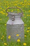 Milk Jug In Meadow Royalty Free Stock Image