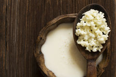 Milk kefir Royalty Free Stock Image