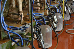 The Milk machine Royalty Free Stock Image