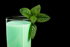 Milk and mint Royalty Free Stock Image