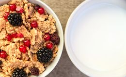 Milk and muesli with berries Stock Photos