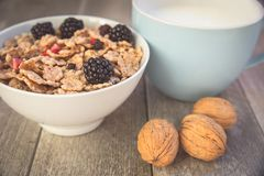 Milk and muesli with berries Royalty Free Stock Image