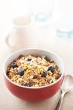 Milk and muesli bowl Royalty Free Stock Photo