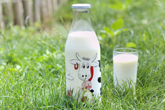 Milk in nature Royalty Free Stock Image