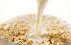 Milk Oatmeal. Eastphoto, tukuchina, Milk Oatmeal, Food And Drink Stock Photography