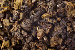 Milk Oolong oolong chinese tea Stock Photo