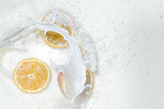 Milk with orange Royalty Free Stock Images