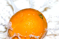 Milk orange splash side. Motion of an orange dropped into milk causing splashes.  This is dropped from the side Stock Photos