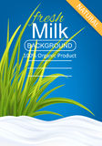 Milk Package Template Stock Image