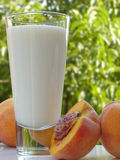 Milk and peaches. Glass of milk and a couple of peaches on a white table. Blurred scenery of the countryside in the background royalty free stock photo