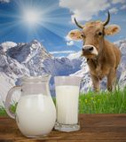 Milk Royalty Free Stock Images