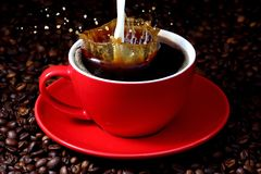 Milk pouring in black coffee. Mile pouring in black cup of coffee on background on dark roasted coffee beans Stock Photo