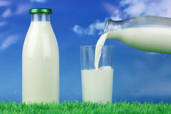 Milk pouring from a bottle into a glass Stock Photography