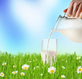 Milk pouring into glass in grass Royalty Free Stock Image