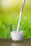 Milk pouring into glass on nature background Royalty Free Stock Photos