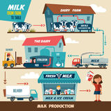 Milk production stages. Stages of production and processing of milk from a dairy farm to table Stock Photos