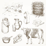 Milk Products And Cow Stock Images