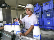 Milk products Royalty Free Stock Image